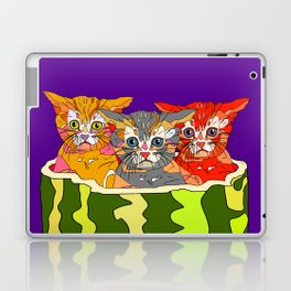 Cats in Watermelon Jacuzzi - Tropical Laptop & iPad Skin