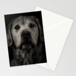 Family Dog - Peyton the Serious Dog Stationery Cards