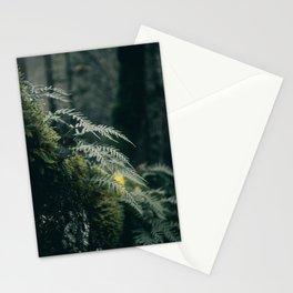 Ferns VII Stationery Cards