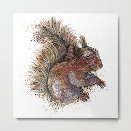 Squirrel Beaver Metal Print