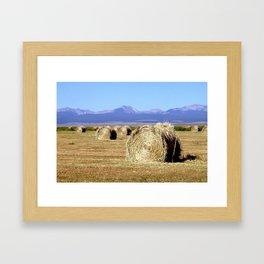 Hay Bales  Framed Art Print