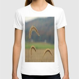 Grass Seed Stalks T-shirt