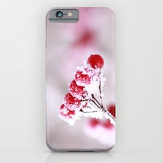 Red Berries Quadro iPhone 6s Slim Case