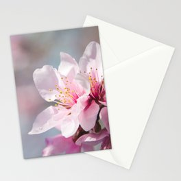 Peach Blossoms 12 Stationery Cards