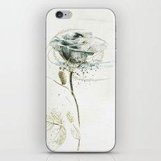 rose3 iPhone Skin
