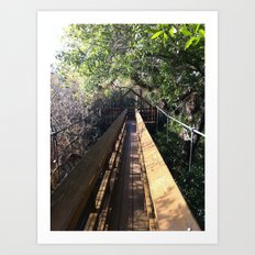 Treetop Pass Art Print