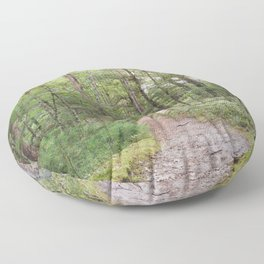 Going Places - Nature Photography Floor Pillow