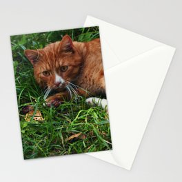 Ginger Acquaintance Stationery Cards