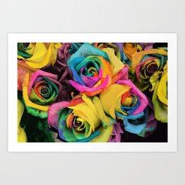 Beautiful Color Roses in Bloom Art Print