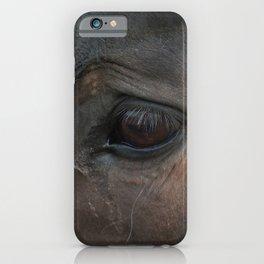 Sad Eyes Animal - Close-up Horse Photograph iPhone Case