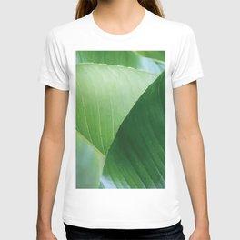 Big Banana Leaves green T-shirt