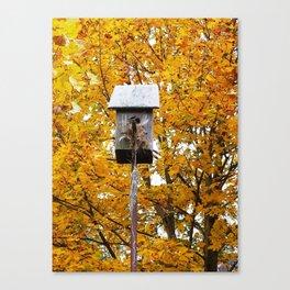 Birdhouse in Fall Canvas Print