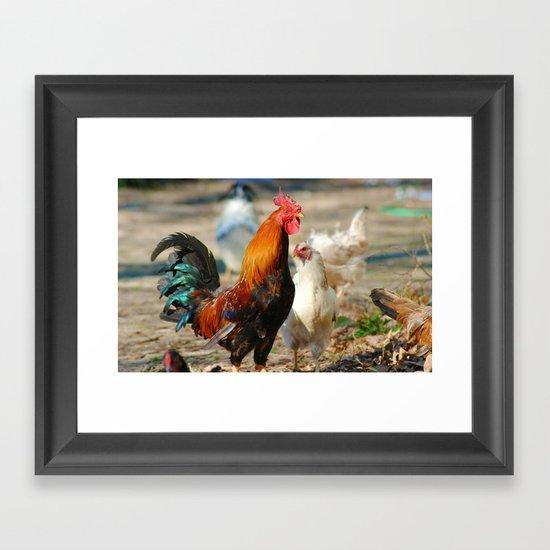 Cock a Doodle Doo! Framed Art Print