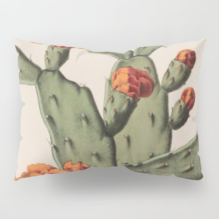 Botanical Cactus Pillow Sham