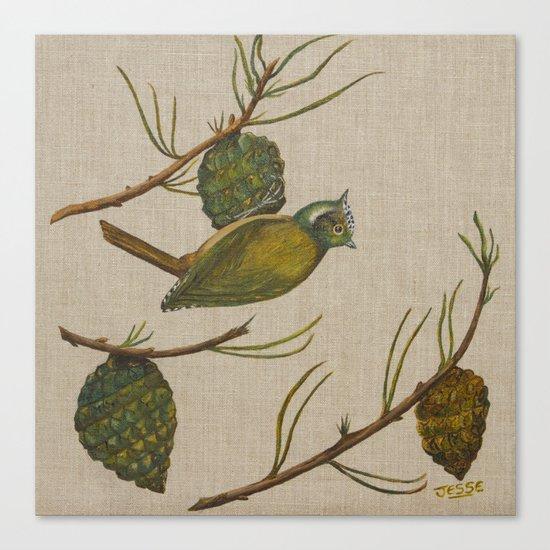 Cone Bird Canvas Print