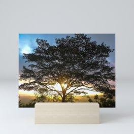 Sunrise Corcovado National Park, Costa Rica Mini Art Print