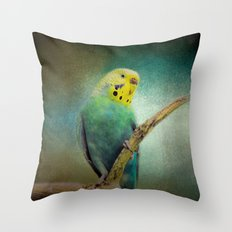 The Budgie Collection - Budgie 1 Throw Pillow