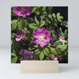 Wild Rose Phoenix Photograph Mini Art Print