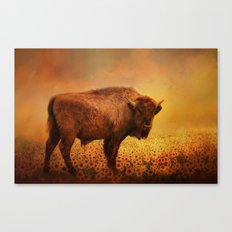 Buffalo Dreams Canvas Print