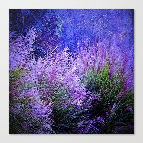 Purple long grass Canvas Print