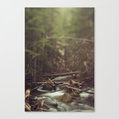 Cold Spring Creek Canvas Print