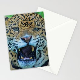 Watch it  Stationery Cards