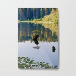 fairy lake, 2017 Metal Print