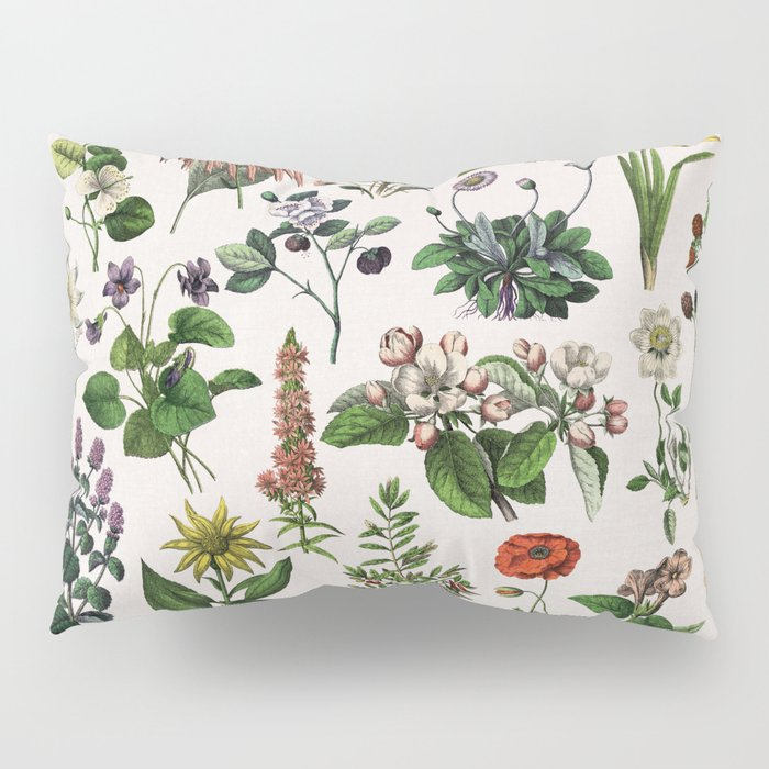 vintage botanical print Pillow Sham