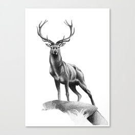 All Muscle - Red Deer Stag Canvas Print