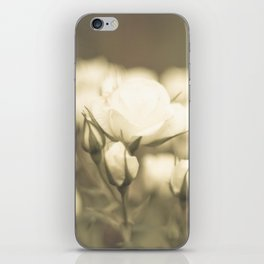Peaceful White Roses (vintage flower photography) iPhone Skin