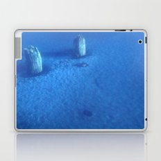 Ice Forest Laptop & iPad Skin
