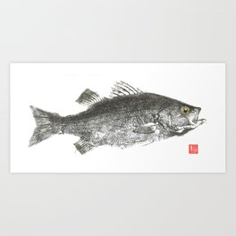 White Bass Art Print