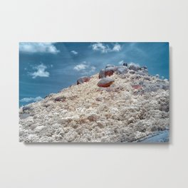 Big Rock Mountain Metal Print