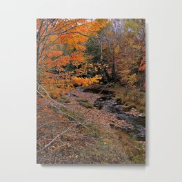 Winding Brook Metal Print