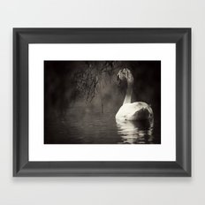 Secret Swan Framed Art Print
