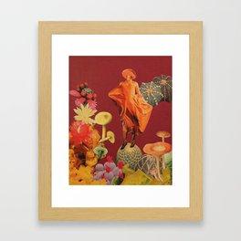 Boletus piperatus Framed Art Print