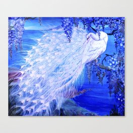 White Peacock at Twilight Canvas Print