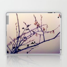 Tranquility  Laptop & iPad Skin