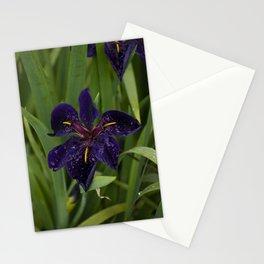 Velvet Iris Stationery Cards