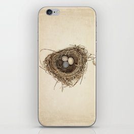 Bird Nest with Stone Eggs on Vintage Paper iPhone Skin