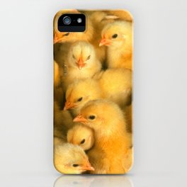 Little Yellow Chicks iPhone Case