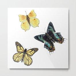 FREE WILD  BUTTERFLIES solo element Metal Print