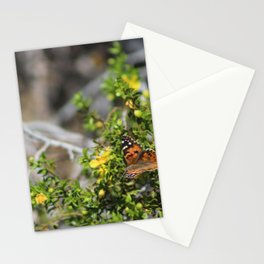 Painted Lady in Coachella Valley Wildlife Preserve Stationery Cards