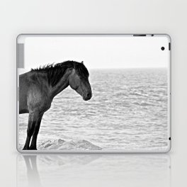 Assateague Pony Laptop & iPad Skin