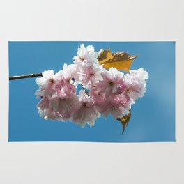 Cheery Blossom Up Close Rug
