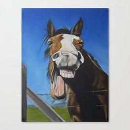 Crazy Horse #2 Canvas Print