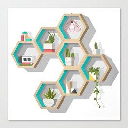 House Plant Shelves Canvas Print