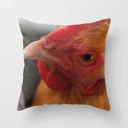 Oyster Cracker our Buff Orpington Hen Throw Pillow