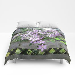 Purple Clematis Flower Vine Basking in Sunlight on a Wooden Garden Arbor Comforters