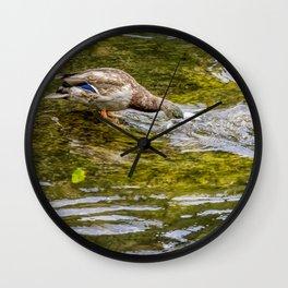 Dabbling Wall Clock
